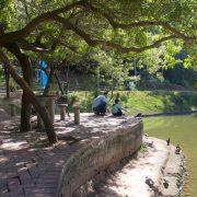 Projeto 'Verão no Parque' tem início neste fim de semana com foodtrucks