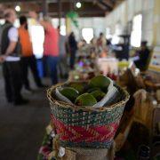 Festival do Cambuci de Paranapiacaba continua neste fim de semana