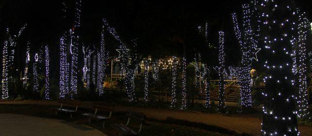 Parque Celso Daniel ganha Vila de Natal, com parque temático e iluminação especial